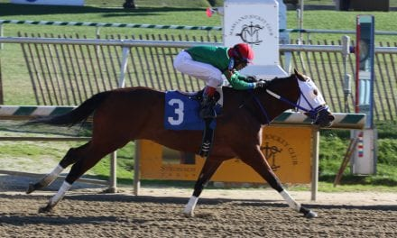 New Jersey breeders to conduct stallion season auction