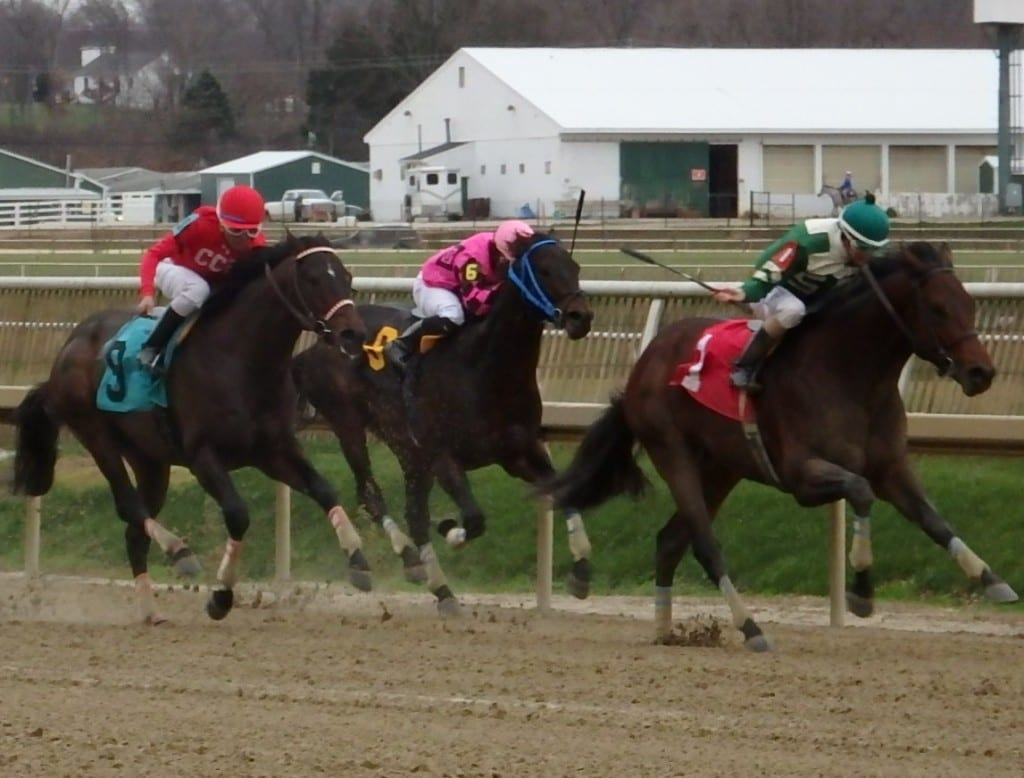 Majestic Hussar (#9) ran second in the Dave's Friend Stakes at Laurel Park in December. Photo by The Racing Biz.