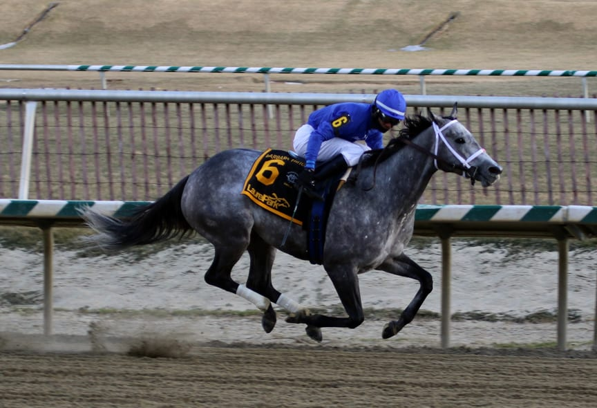 McLaughlin barn looks for Fritchie repeat