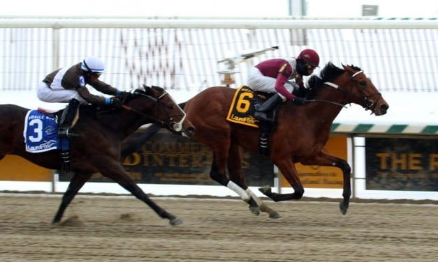 Marengo Road looks to bounce back in Tesio