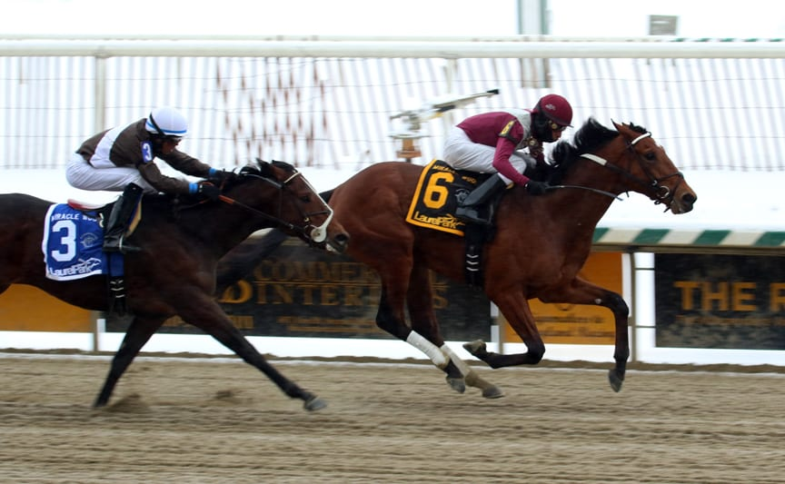 Marengo Road held off Charmed Victory to win the Miracle Wood Stakes Monday at Laurel Park. Photo by Laurie Asseo.