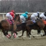Consensus-seeking Jockeys' Guild not for – but not against – federal bill