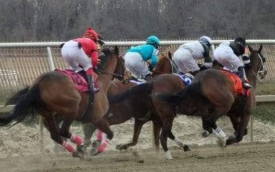 Consensus-seeking Jockeys' Guild not for – but not against – federal bill