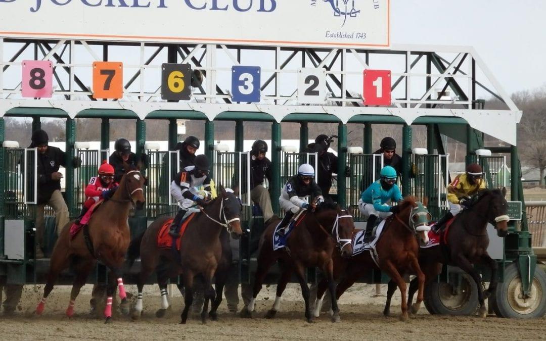 Maryland Jockey Club closes gates to Belmont shippers