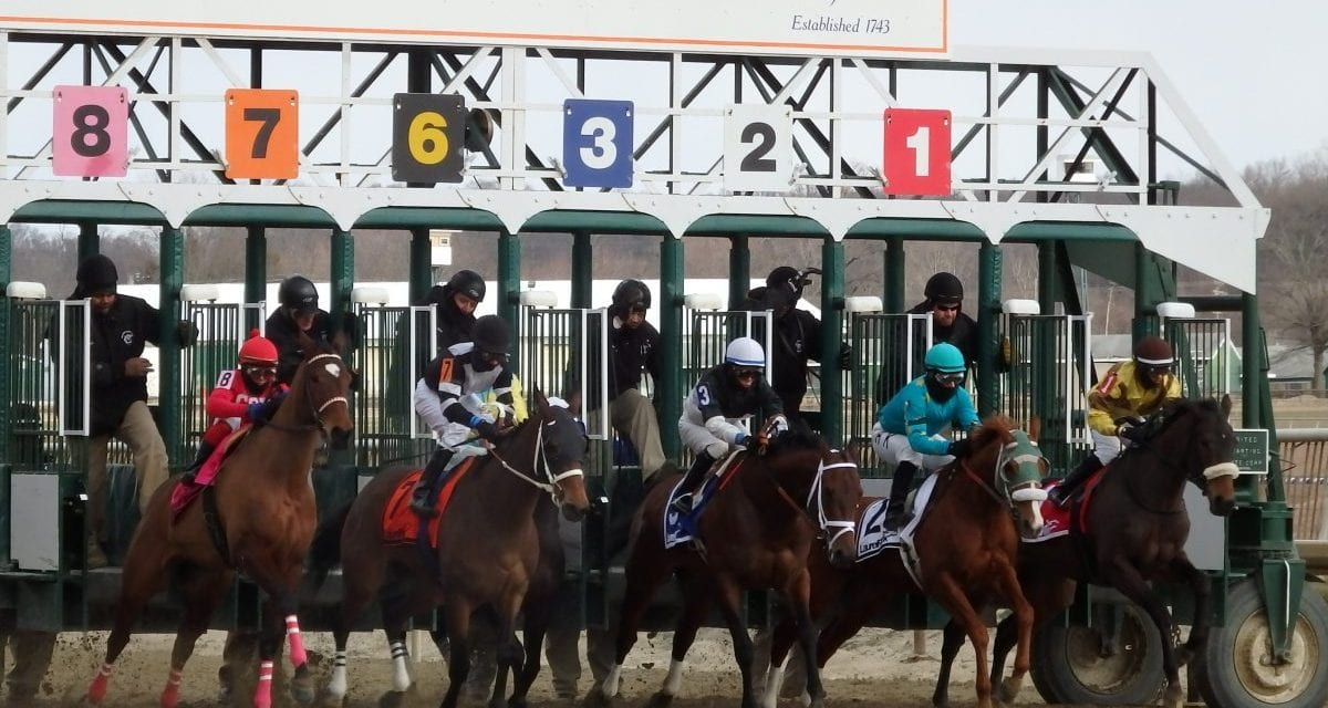 Trombetta, Marengo Road map Preakness path