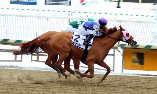 Page McKenney named PA-bred horse of the year