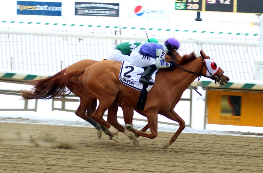 Page McKenney was narrowly best in today's Grade 3 General George at Laurel Park. Photo by Laurie Asseo.