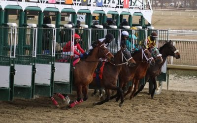 Maryland Racing Commission to analyze status of Thorougbred racing, breeding industries