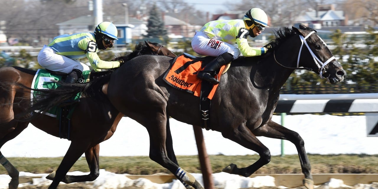 NJ-bred Sunny Ridge earns Withers win