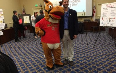 Horse Industry Day aims to raise awareness in Annapolis