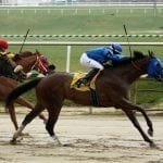 Sonny Inspired headlines Md-bred stakes