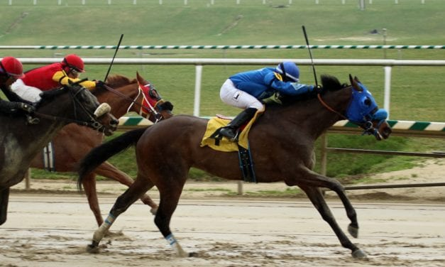 Schoenthal brings twofer to Fire Plug Stakes