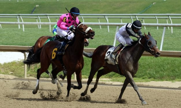 Analyze sweeps to Winter Melody victory