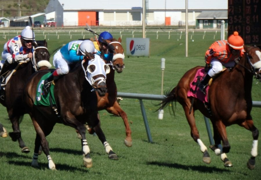 Monster Sleeping (#5) edged Two Wonders to win an allowance race at Laurel Park on April 3, 2016.