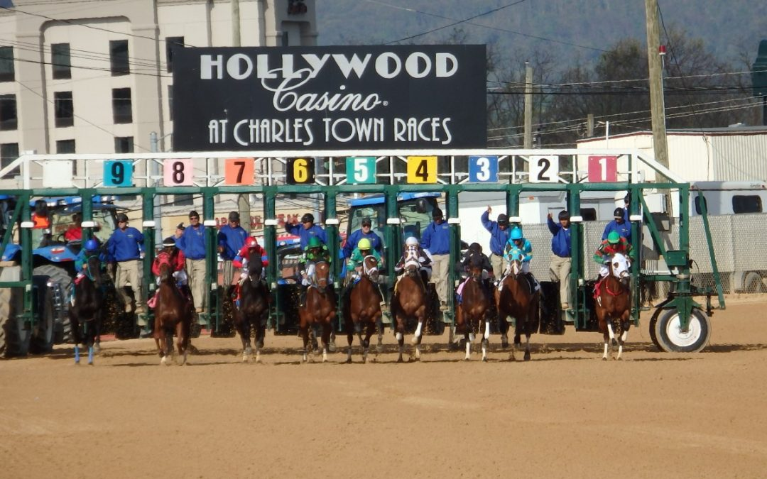 In Focus: Wagering Charles Town Classic Day