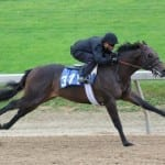 Fasig-Tipton 2yo sale carries hopes for momentum