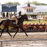 All signs positive for Exaggerator after Pimlico jog