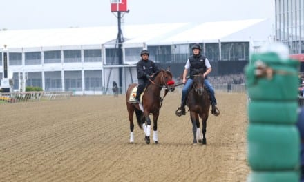 Nyquist to be saddled in indoor paddock
