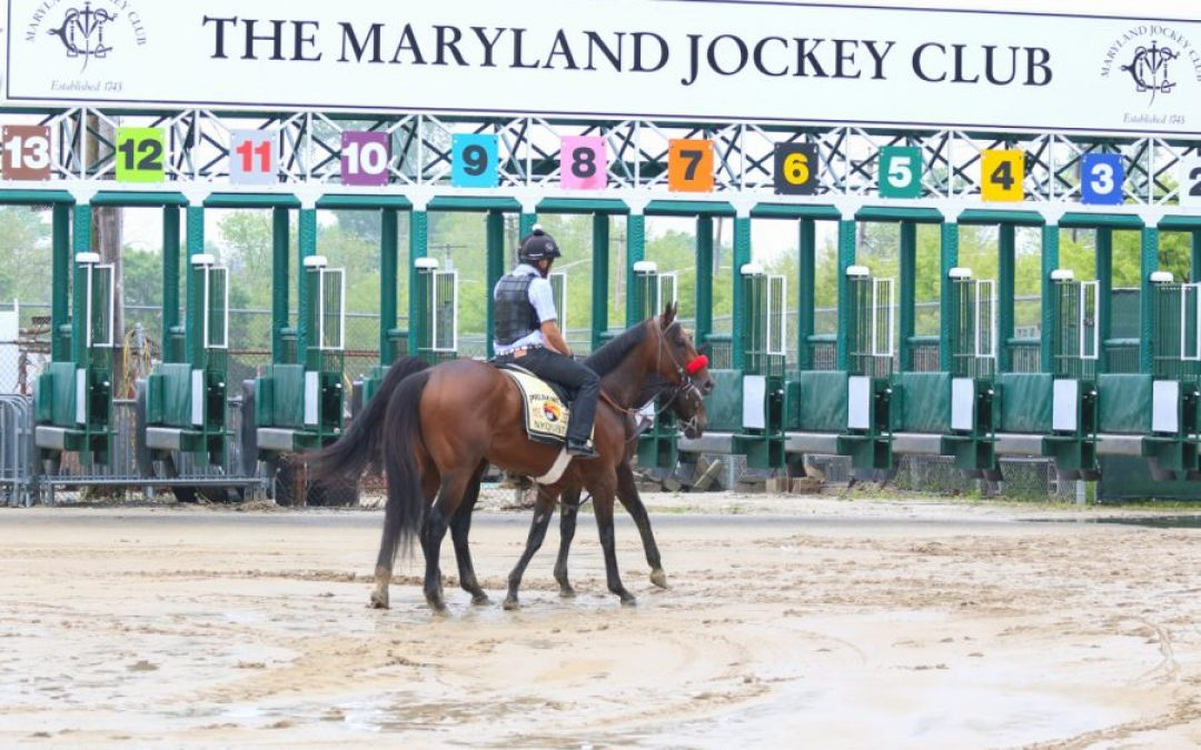 """Fravel impressed with """"first class"""" work on Laurel Park"""
