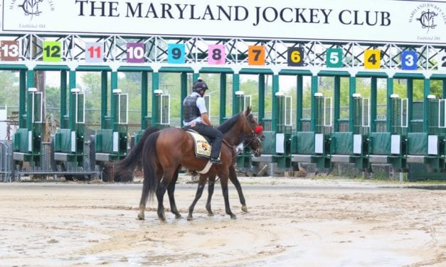 Pimlico forced to cancel Sunday card after four races
