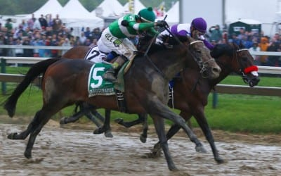 Latest Preakness odds and post positions