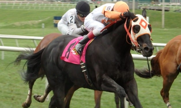 Big names highlight Preakness eve stakes noms