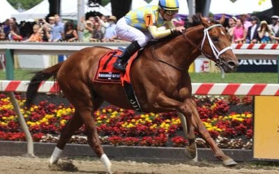 Missed Saturday's Off to the Races radio show? Listen here!