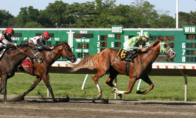 Donegal Moon rallies to Pegasus win