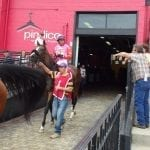 High winds force Pimlico cancellation