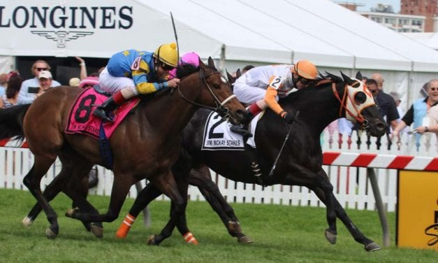 Back home, Ben's Cat looks to tie a record