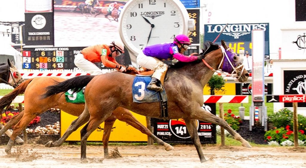 Maryland Commission receives reports on Preakness day horse deaths