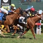 Komlo, M & D wave the Maryland flag with two stakes wins