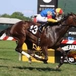 Two Notch Road, Queen Caroline log stakes wins