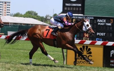 Stellar Wind repeats as Va-bred champion
