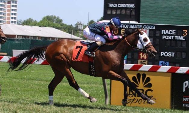 Ben's Cat, Rose Brier top Laurel Saturday stakes