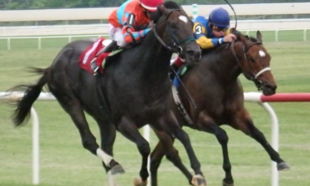 Take Cover seeks to defend PA Governor's Cup title