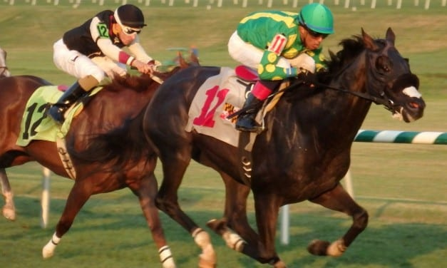 August 19 racing highlights: Northern Smile rallies to win
