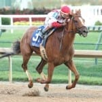 Patiently handled Paid Up Subscriber ready to jump up in Del 'Cap