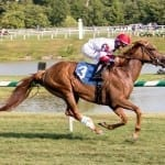 Records fall on Laurel Park turf course