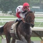 Picks are live for Sunday's FREE Handicapping contest