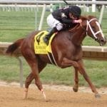 In Focus: Wagering G1 Delaware Handicap Pick Four