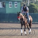 Nyquist takes spin around Monmouth Park