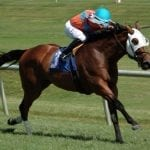 Yesterday and today: July 22 racing highlights
