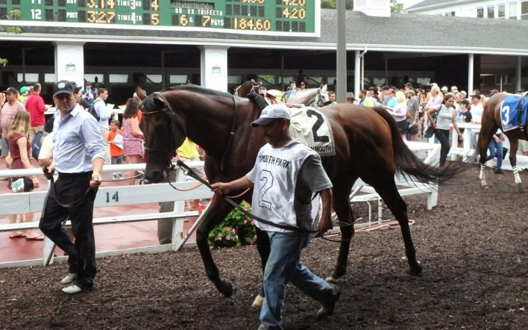 NJ appellate court allows riding crop reg