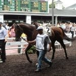 """Monmouth Park struggling, but """"we will survive"""""""