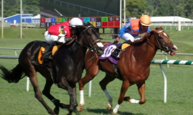 Lovable Lady looks for fourth straight in Distaff