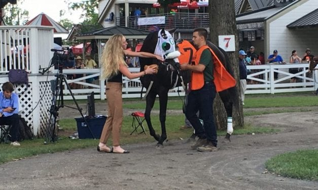 Spa selections 2019: Saratoga September 2