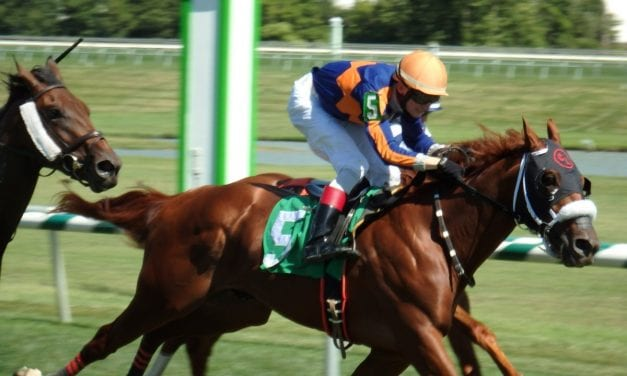 Lynch has trio for Laurel juvenile stakes