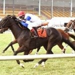 Blacktype takes Turf Cup in record time