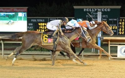 Nominations robust for Sugar Maple, Hilton, Russell Road Stakes